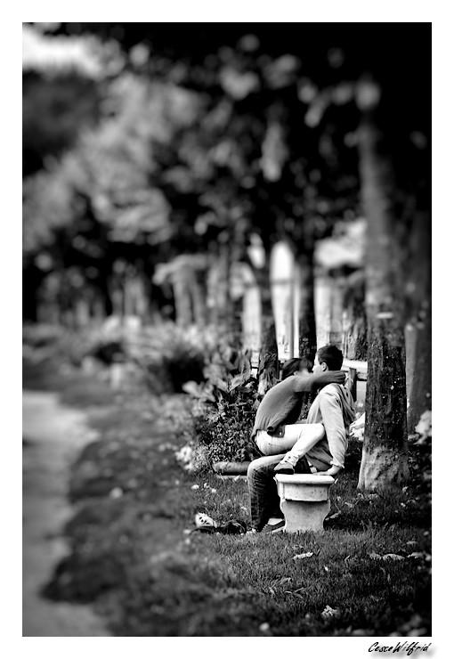 Amour d'automne Img_8567-2---copie-2e34430