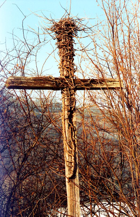 Sacrilège ou prodige ? La-croix-et-el-nid-31cf025