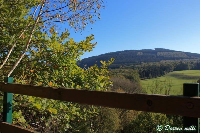promenade sur les fagnes et alentours ( jalhay ) le 16-oct-2011 Dpp_jalhay---16-o...1---0021-2dd6e8e